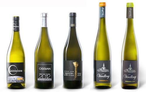 vinos-verdejos-ossian